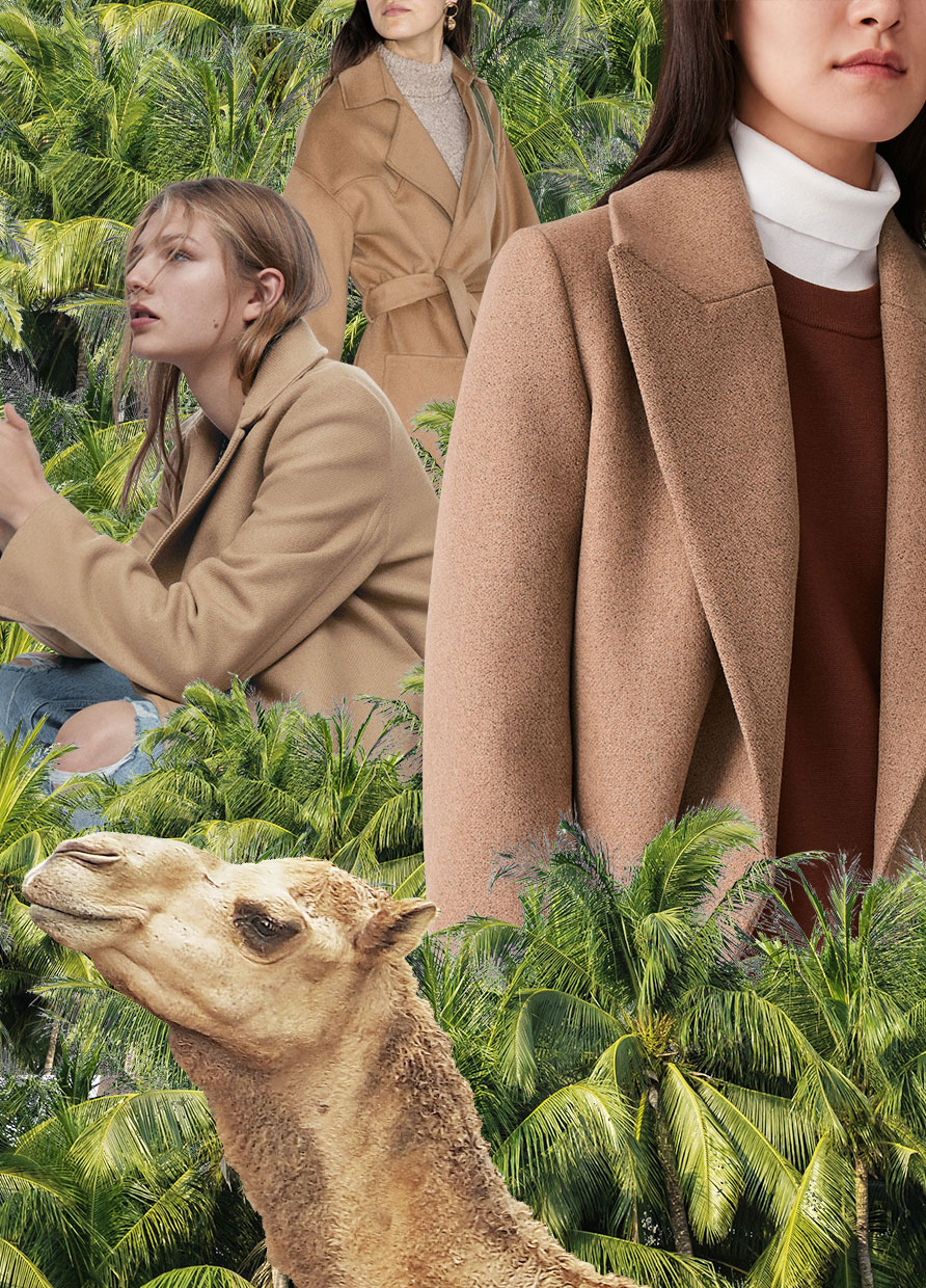 YOU WILL NEVER NOT LOOK CHIC IN A CAMEL COAT